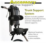 Trunk support system for the Rifton adaptive tricycle.