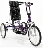 Freedom Concepts AS2000 Adventurer Series Tricycle in Purple